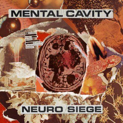 Cavity Volume X